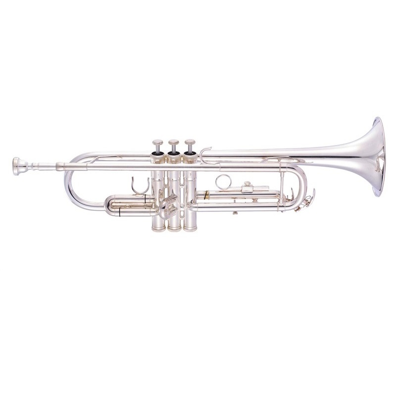 how to clean a silver trumpet at home